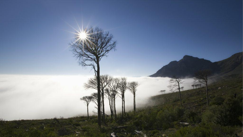 Tanzania als zonvakantie in februari